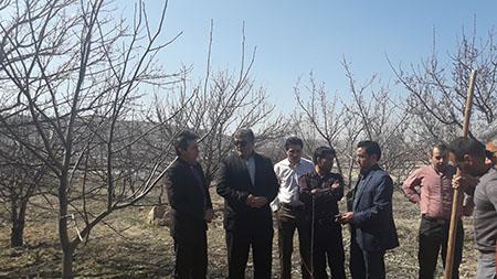 برگزاری مراسم درختکاری در اداره کل هواشناسی خراسان شمالی